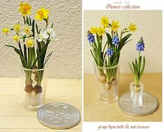 Visions of #Spring #Flowers to come! suisen-2.jpg #miniatures