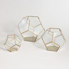 One of my favorite discoveries at WorldMarket.com: Brass Geo Terrarium