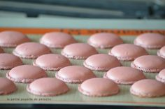 COMMENT REUSSIR SES MACARONS AU THERMOMIX LE PAS A PAS EN IMAGES Macaron Flavors, Macaron Recipe, Macarons, Dessert Thermomix, Prep & Cook, Cookie Recipes, Dessert Recipes, Fancy Desserts, Perfect Cookie