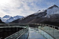 I want to go here... | Glacier Skywalk Photos & Video | Brewster Travel Canada