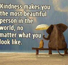 Kindnesses