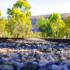 Train-line, Todd River, Alice Springs, Northern Territory, Australia Western Australia, Australia Travel, Alice Springs Australia, Outback Australia, Travel Sights, Camping, Fresh Water, Wilderness, Touring