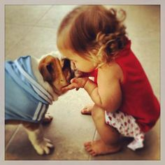 pure love #english #bulldog #englishbulldog #bulldogs #breed #dogs #pets #animals #dog #canine #pooch #bully #doggy #love #friends #friendship #kiss #hugs #devotion #kids