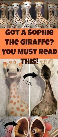 Beware of Sophie The Giraffe. Health tips for parents. Parenting advice. #sophie #mold #baby #safety