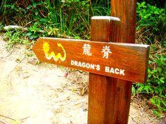 Exploring Hong Kong's Vast Nature Reserves: Hiking the Dragon's Back Trail | jetsettimes
