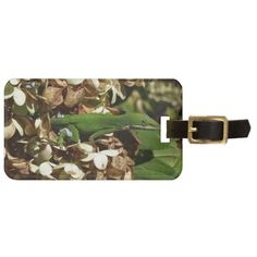 Awesome Anole Lizard Photography Luggage Tag #anole #lizard #photography #luggagetag #travel And www.zazzle.com/naturesmiles*