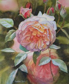 """Rose Endeavour"" watercolour by Svetlana Orinko Impressionism, Original Artwork, Instagram Images, Greeting Cards, Design Inspiration, Watercolor, Wall Art, Gallery, Rose"