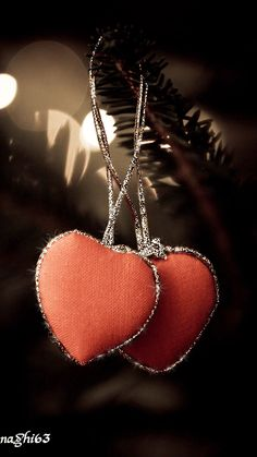 Decent Image Scraps: Heart Animation  █▄◯╲╱ Ξ¸.♥ღ♡ღ ♥.¸¸ღ♡ღ.♥¸.