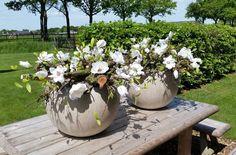 Decoratie potten Deccoratietakken met witte magnolia www.decoratiestyling.nl