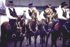 Fastelavn til hest på Amager