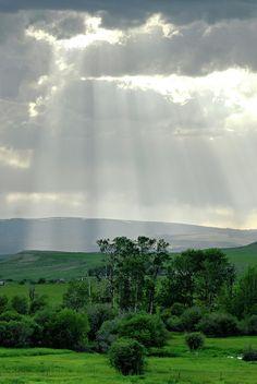 ✯ Rain Sun Rays
