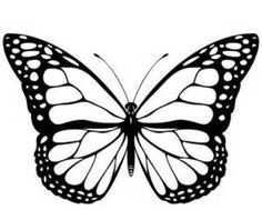 Printable monarch-butterfly-coloring-page - Coloringpagebook.com