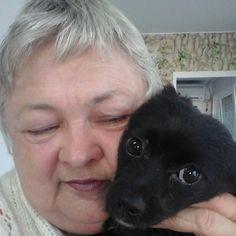 O batranica croseteaza  jucării, iar cu banii castigati ajuta animalele adoptate Pets, Animals And Pets