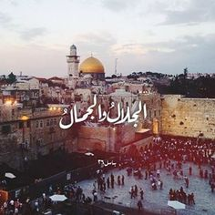 I love Jerusalem Palestine Quotes, Israel Palestine, Jerusalem Israel, The Beautiful Country, Beautiful Places, Dome Of The Rock, Funny Quotes For Instagram, Arab World, Palestinian Embroidery