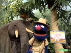 Sesame Street - Grover in the Jungle - YouTube