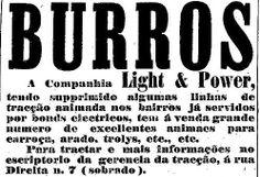22-09-1901 - Venda de animais pela Light & Power.