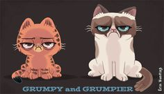 Grumpy and Grumpier I can't get enough of these grumpy cats. LMAO