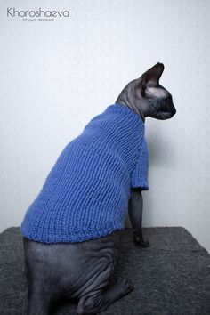 Handmade Shop, Handmade Items, Sphynx Cat Clothes, Cat Sweaters, Blue Birthday, Easy Knitting, New People, Gifts For Family, Creative Ideas
