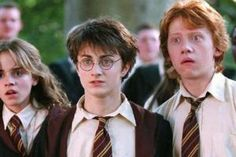 gif, harry potter y young GIF en We Heart It Georgia Groome, Best Perennials, Spring Perennials, Harry Potter Films, Rupert Grint, Quokka, The Hollywood Reporter, Daniel Radcliffe, New Dads