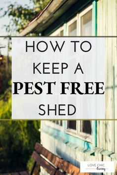 How to create and maintain an outdoor shed free from pests, bugs and insects all year round. Perfect ideas for maintaining and keeping your shed pest free, bug free. Contemporary Garden Rooms, Free Shed, Uk Homes, Outdoor Sheds, Raising Chickens, Garden Spaces, Color Themes, Bugs, Insects
