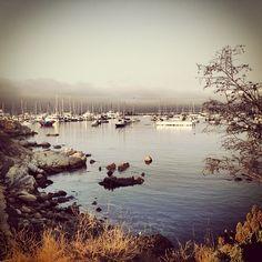 Monterey Marina, #Route1 #roadtrip #California