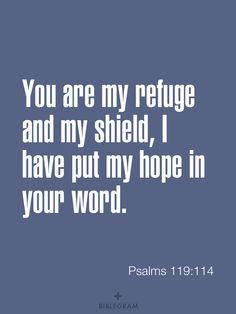 Psalms 119:114 / BIBLE IN MY LANGUAGE