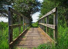 one point linear perspective definition - Google Search