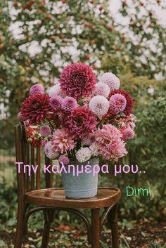 Cut Flower Garden, Flower Farm, My Flower, Flower Blossom, Beautiful Flower Arrangements, Floral Arrangements, Beautiful Flowers, Deco Floral, Arte Floral