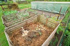 Ethereal Helping Nature by Composting Ideas. Admirable Helping Nature by Composting Ideas. Terrarium, How To Make Tempeh, Composting 101, Garden Compost, Dollar Store Crafts, Garden Projects, Gardening Tips, Lawn, Nature