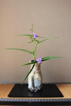丁酉神無月の花 | 茶花宗耕2 のブログ