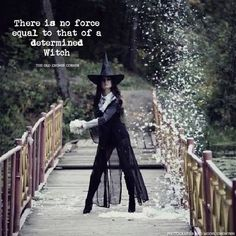 A Determined Witch………The Witch Said What? – Witches Of The Craft® Witch Quotes, Witch Meme, Pagan Quotes, Eclectic Witch, Wicca Witchcraft, Magick Spells, The Good Witch, Season Of The Witch, White Witch