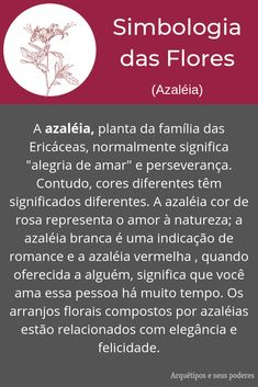 Azaléia All About Plants, Magic Symbols, Baby Witch, Drarry, Art Therapy, Feng Shui, Witchcraft, Reiki, Chakra