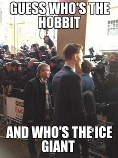 It's Frost Giant, not Ice Giant! ///// My 2 favorite fandoms collide! (LOTR/The Hobbit & Loki/Avengers) Dc Memes, Marvel Memes, Avengers Humor, Loki Avengers, Superwholock, Johnlock, Destiel, Fandoms, Geeks