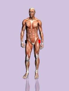 BIOMAGNETISMO: CURACIÓN CON IMANES: Problemas Intestinales y digestivos. TRATAMIENTO MEDIANTE BIOMAGNETISMO