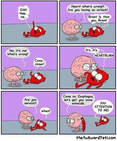 Brain vs Heart vs Heart burn