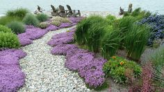 beach garden Path