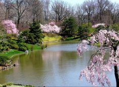 springtime |