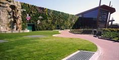"""Accepted as the world's largest living wall by the Guinness Book of World Records, this 13,594 square foot living wall decorates the exterior of the Il Fiordaliso shopping center. Incorporating 44,000 plants, the wall """"cuts down on Il Fiordaliso's energy consumption, blocking solar gain and insulating in the colder months. The plants also absorb noise and emissions from cars idling in the nearby parking lot,"""" according to Inhabitat."""