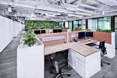 Spatial Concept has designed a new office space for Hong Kong law firm Stephenson Harwood.