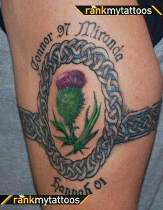 Celtic Armband Celtic Knot Oval Sottish Thistle Celtic Knot Tattoo