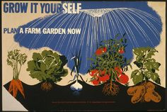 During World War I and World War II, gardening took on a distinctly martial air. Citizens were encouraged to grow their own backyard produce (dubbed �war gardens� in WWI and �victory gardens� in WWII, which shows how far the art of positive spin had progressed in just a few decades). At the same time, food [...]