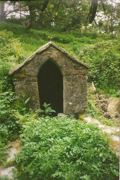 In a secluded dell, St Pedry's well, Treloy, Newquay (Nr. 2686, Landranger Map 200)