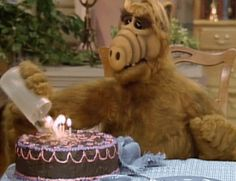 Find GIFs with the latest and newest hashtags! Search, discover and share your favorite Birthday GIFs. The best GIFs are on GIPHY. Happy Birthday Meme, Belated Birthday, Birthday Messages, 80 Tv Shows, Aliens Funny, Gifs, Happy B Day, Best Friends Forever, Classic Tv