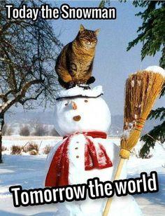 Funny Christmas Snowman Memes