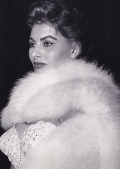 Old Hollywood Stars, Hollywood Glamour, Hollywood Icons, Italian Actress, Italian Beauty, Sophia Loren, Cannes Film Festival, Most Beautiful Women, Pin Up Girls