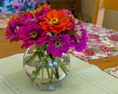 The person who bought these zinnias at a farmer's market liked them so much that they decided to take a picture of them. Joy is where it's at.