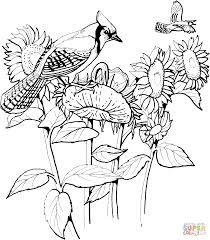 Image result for realistic sunflower coloring page