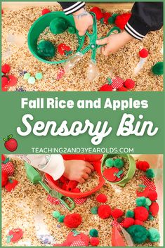 Put together a rice apple sensory bin that strengthens fine motor skills. Lots of scooping and pouring using tongs and cups! #apples #rice #sensory #bin #finemotor #toddlers #preschool #fall #autumn #teaching2and3yearolds
