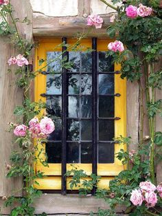 Yellow window with pink roses at Marie Antoinette's hamlet ~ Versailles ~ France