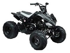 Tao t125gx atv features sleek sport styling netted footwells and tao t125gx atv features sleek sport styling netted footwells and powerful 125cc engine for great looks and action on the track or the trail the fandeluxe Image collections